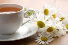 Tè e tisane